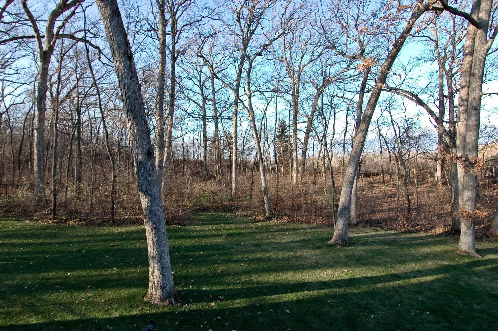 Real Estate Photography - 2100 Nish, Crystal Lake, IL, 60012 - Back Yard