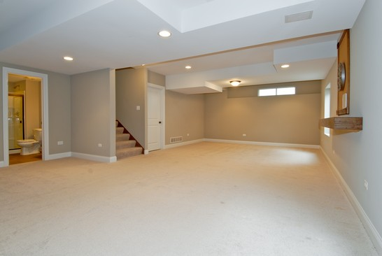 Basement photograph of 26424 Silverleaf Plainfield Illinois 60585