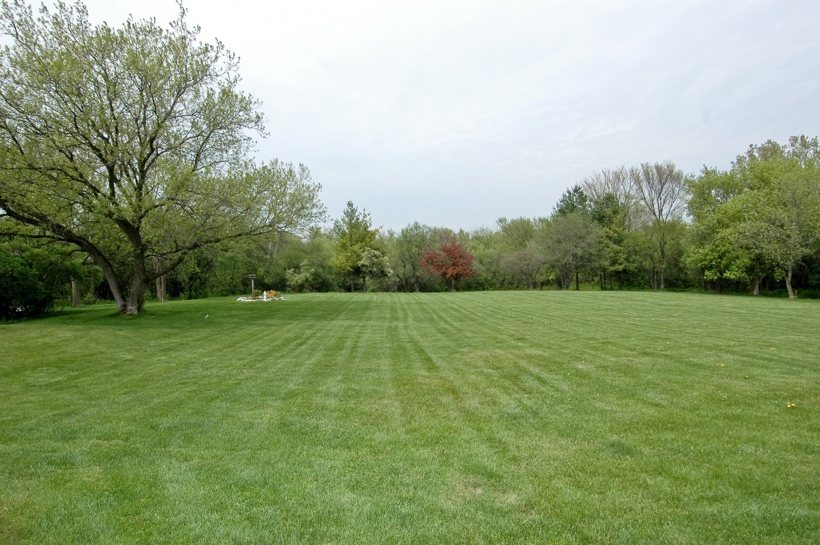Real Estate Photography - 240 Steeplechase, Barrington Hills, IL, 60010 - Back Yard