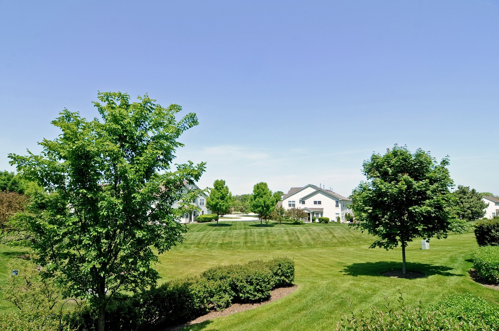 Real Estate Photography - 727 Sycamore, Lindenhurst, IL, 60046 - Back Yard