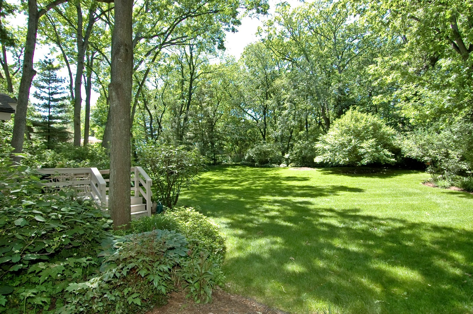Real Estate Photography - 4403 New Hampshire, Crystal Lake, IL, 60012 - Back Yard