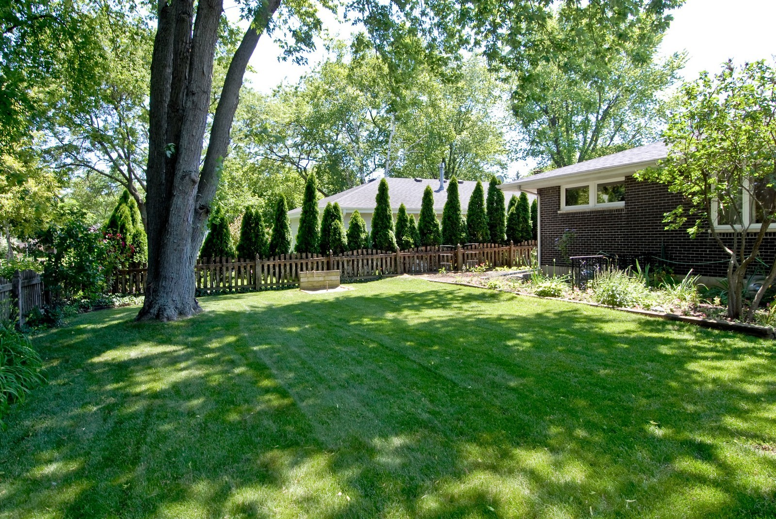 Real Estate Photography - 520 S 11th, St Charles, IL, 60174 - Back Yard