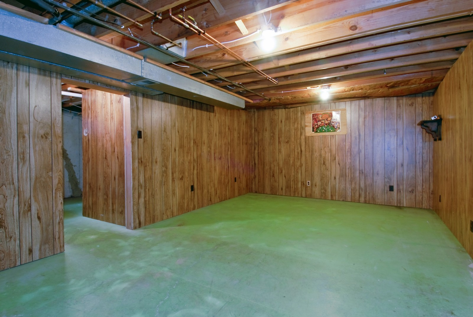 Real Estate Photography - 1625 Lucylle, St Charles, IL, 60174 - Basement