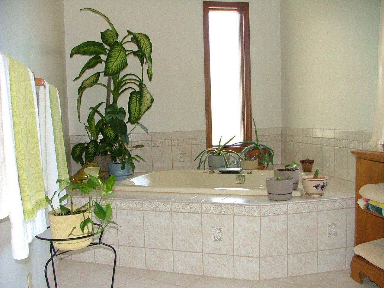 Real Estate Photography - 37W786 McKee St, Batavia, IL, 60510 - Master Bath