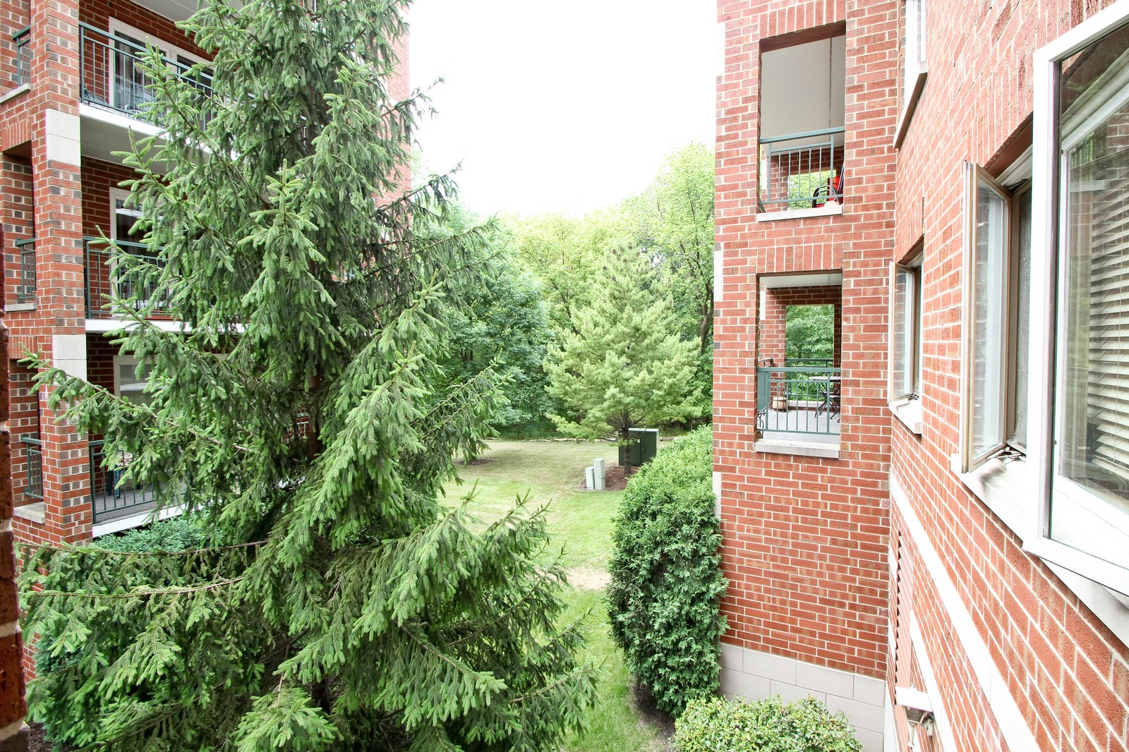 Real Estate Photography - 5340 N Lowell Ave, Unit 206, Chicago, IL, 60630 - View
