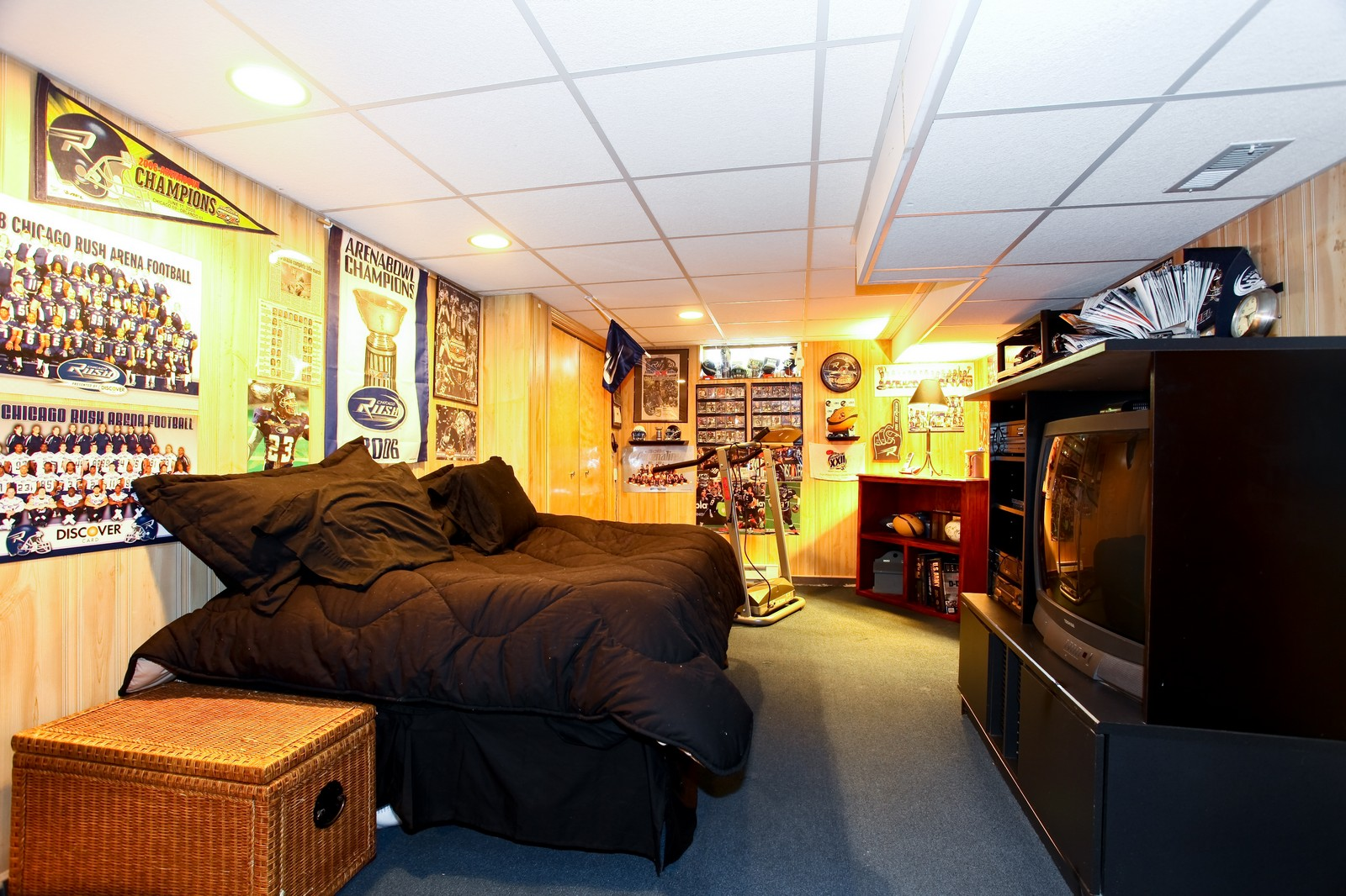 Real Estate Photography - 1427 S 4th St, Saint Charles, IL, 60174 - Basement