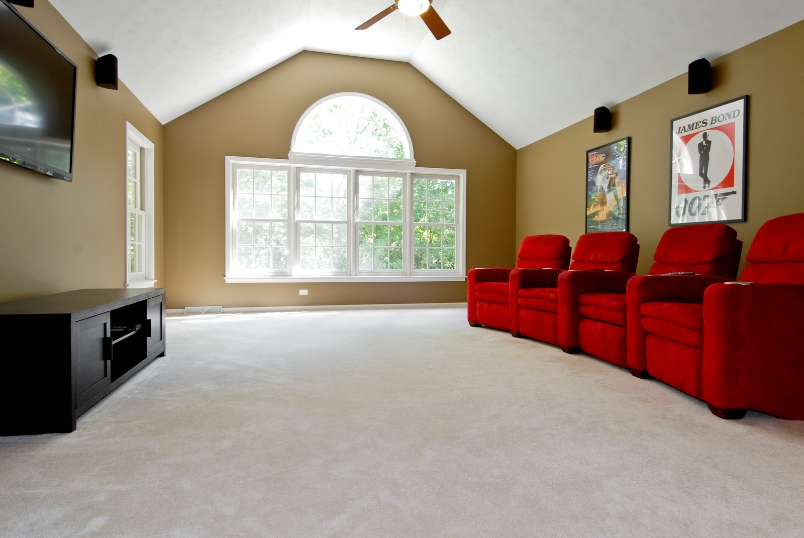 Real Estate Photography - 2502 Majestic Oaks Ln, Saint Charles, IL, 60174 - Theater