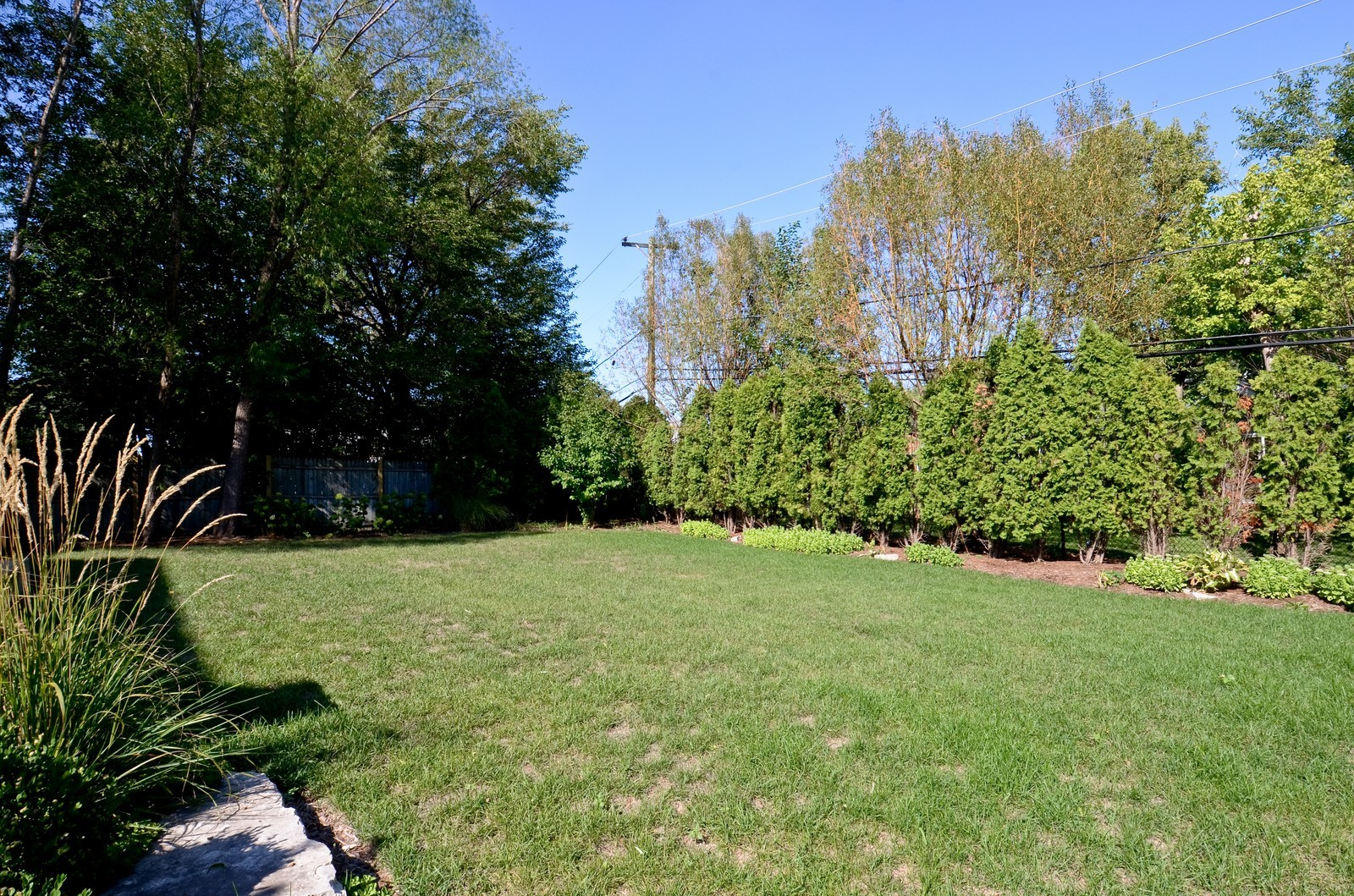 Real Estate Photography - 4343 Woodward Ave, Downers Grove, IL, 60515 - Back Yard