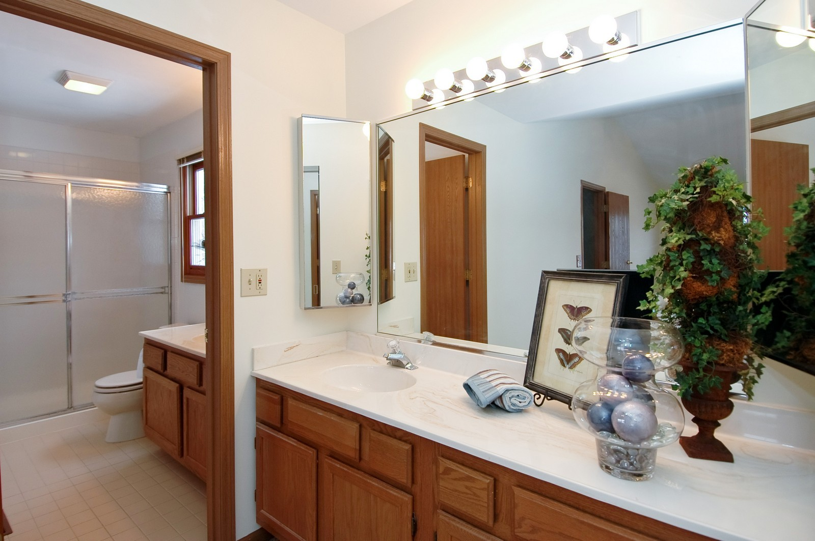 Real Estate Photography - 62 Crystal Ridge Dr, Crystal Lake, IL, 60012 - Master Bathroom