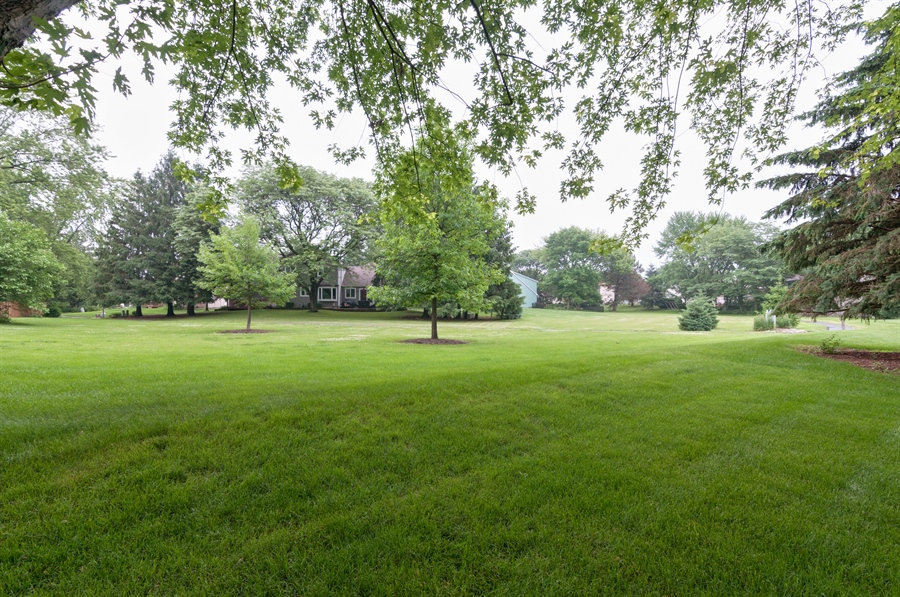 Real Estate Photography - 2868 Valley Forge Rd, Lisle, IL, 60532 - Park View