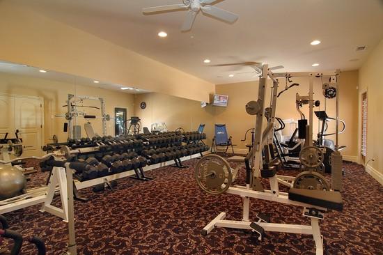 Real Estate Photography - 3755 Mullenhurst Dr, Palm Harbor, FL, 34685 - Bonus Room w/access to outdoor Terrace