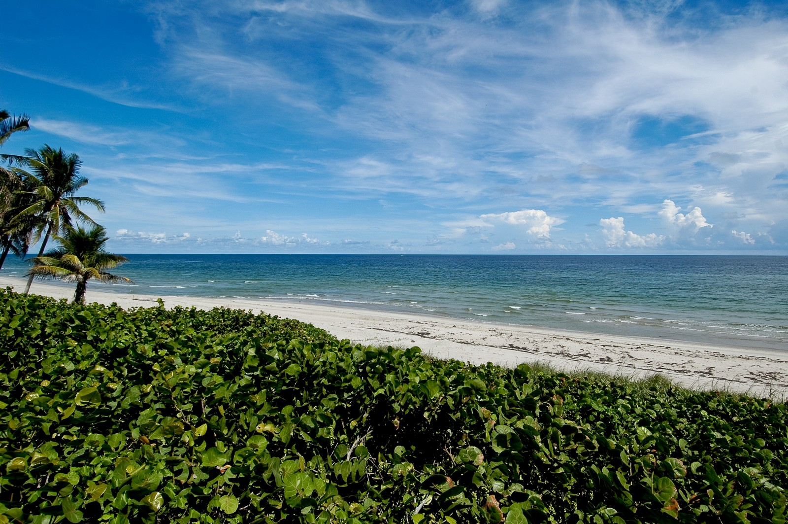 Real Estate Photography - 999 Hillsboro Mile, Hillsboro Beach, FL, 33062 - Ocean View