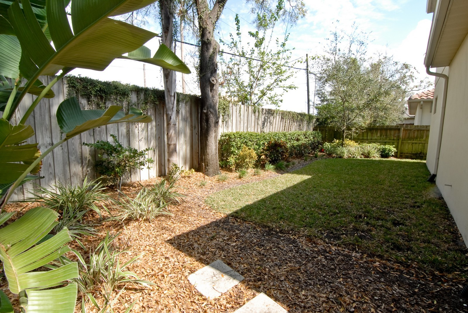 Real Estate Photography - 3107 Fountain Blvd, Tampa, FL, 33609 - Back Yard