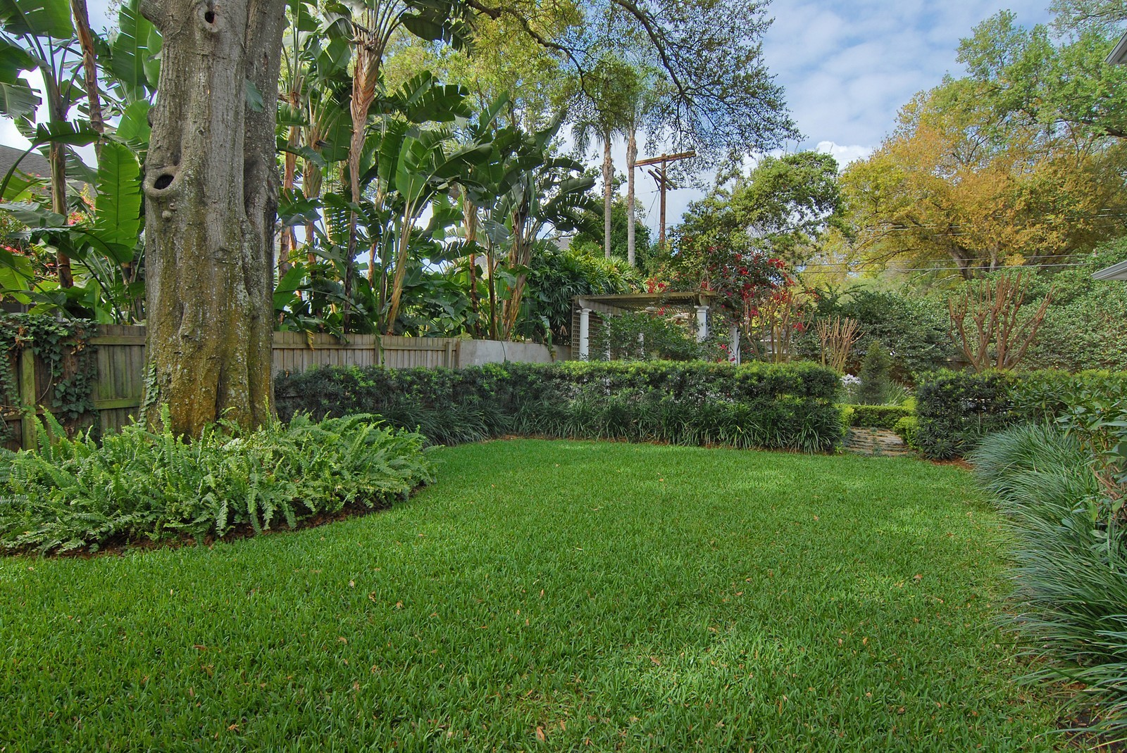 Real Estate Photography - 2223 S. Bendelow Trail, Tampa, FL, 33629 - Side Yard