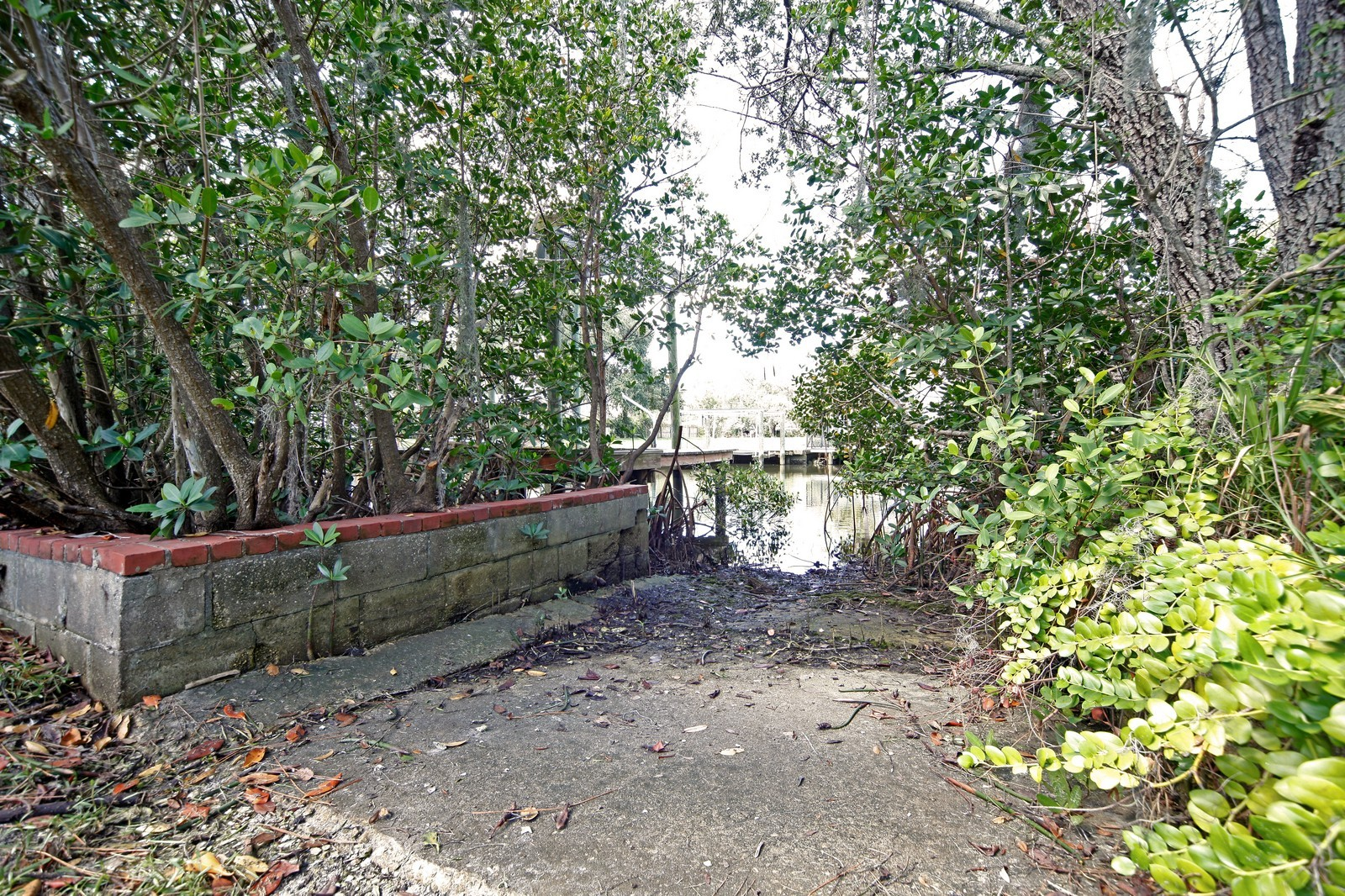 Real Estate Photography - 2621 N Dundee St, Tampa, FL, 33629 - View