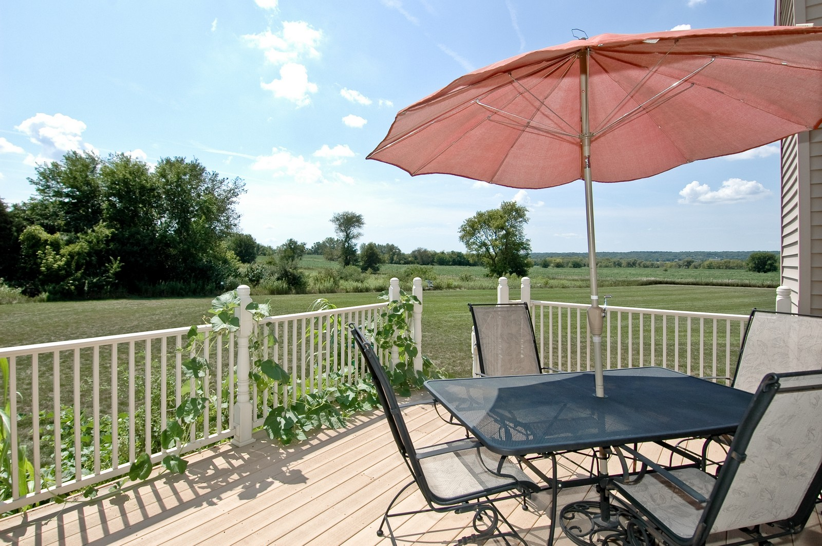 Real Estate Photography - 6513 Sweet Bay Drive, McHenry, IL, 60050 - Deck
