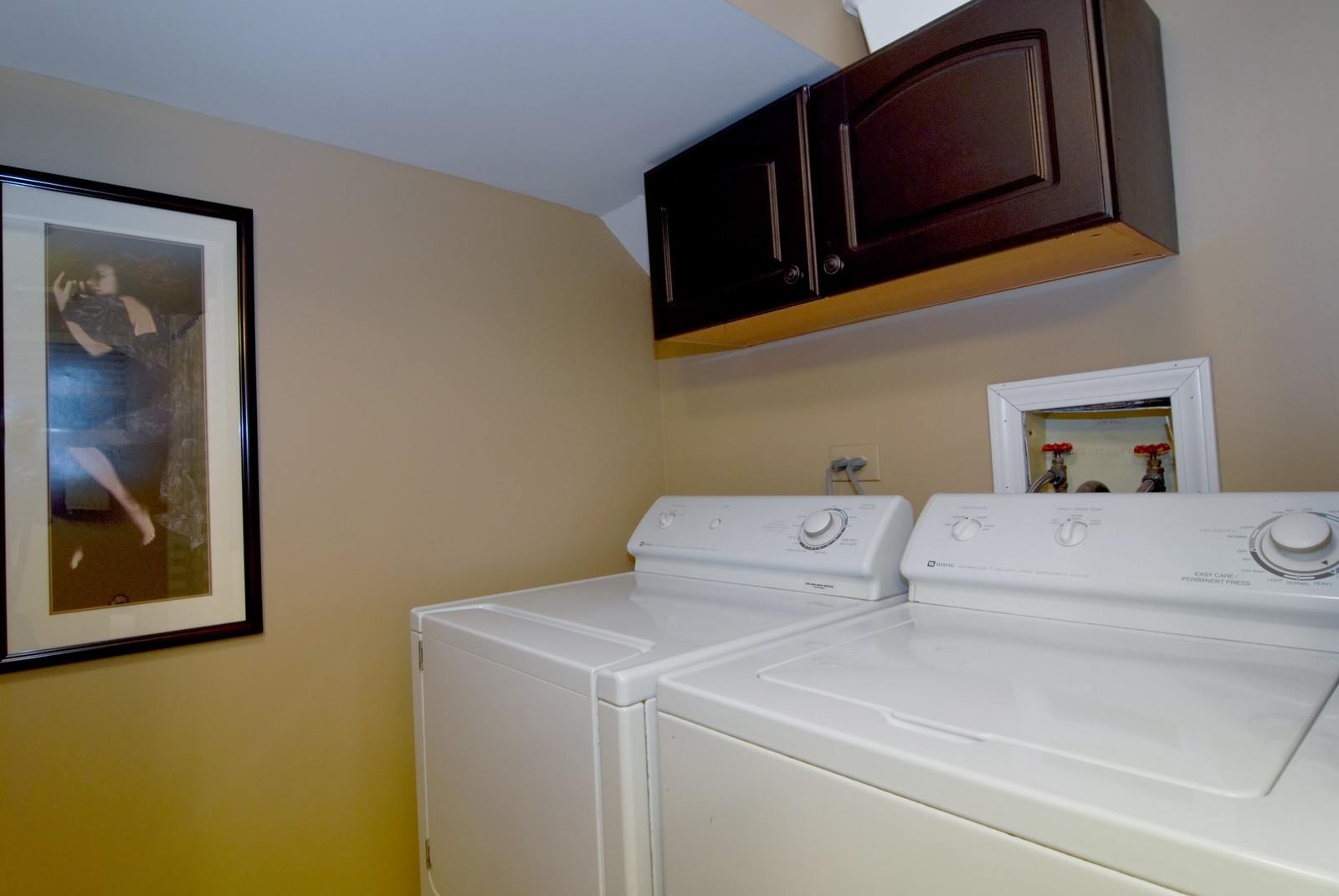 Real Estate Photography - 2646 N Seminary, Unit 1, Chicago, IL, 60614 - Laundry