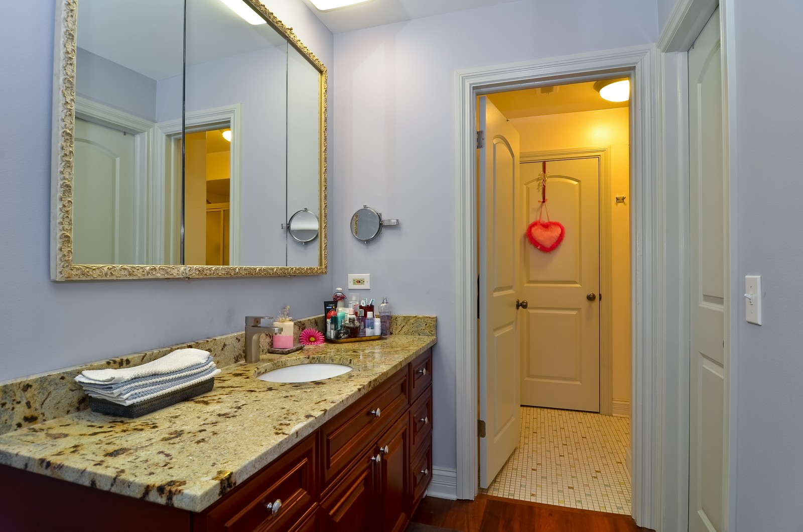 Real Estate Photography - 7861 Niles Center Rd., 201, Skokie, IL, 60077 - Master Bathroom
