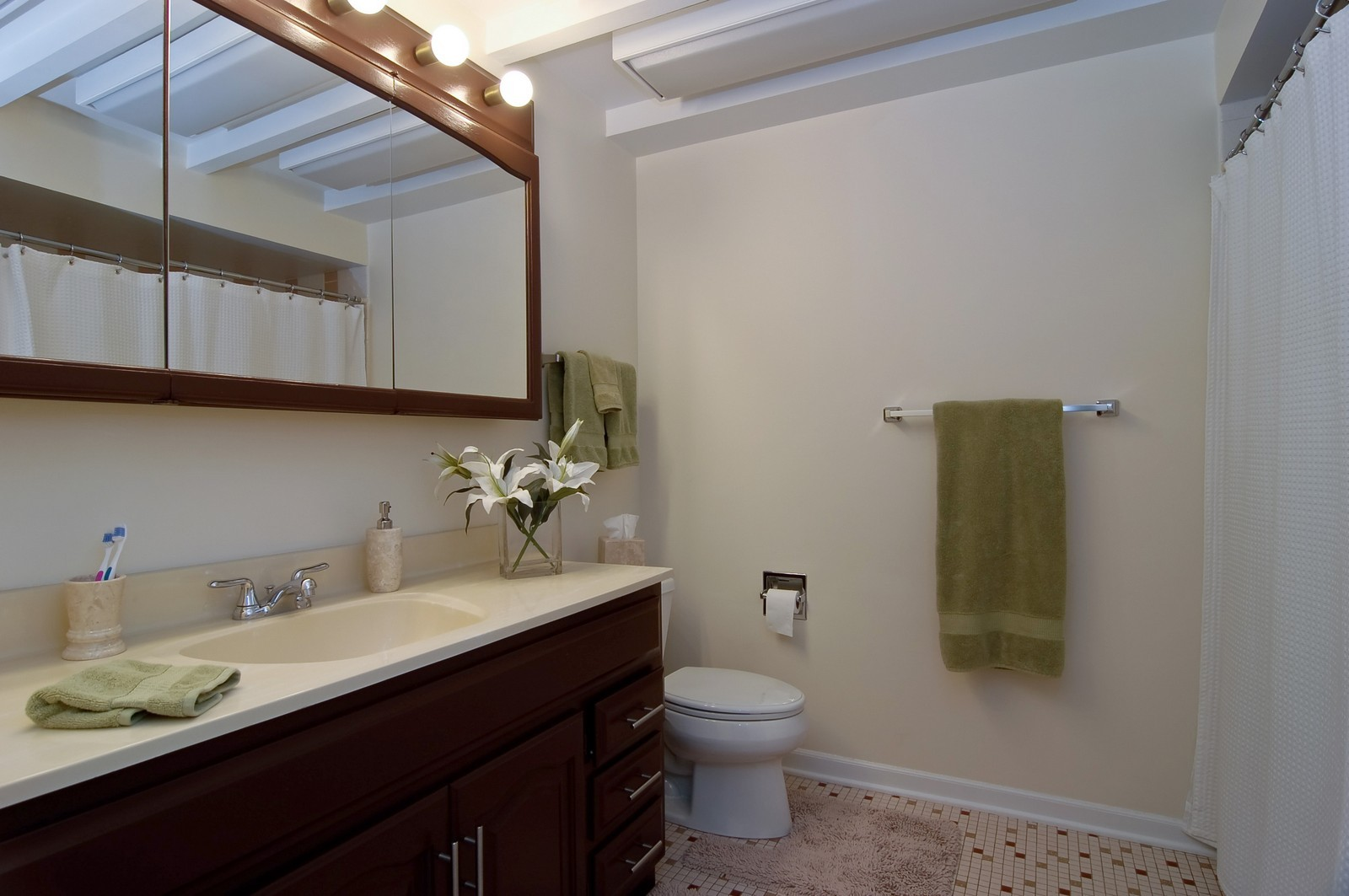 Real Estate Photography - 966 N Topanga, Palatine, IL, 60074 - Bathroom