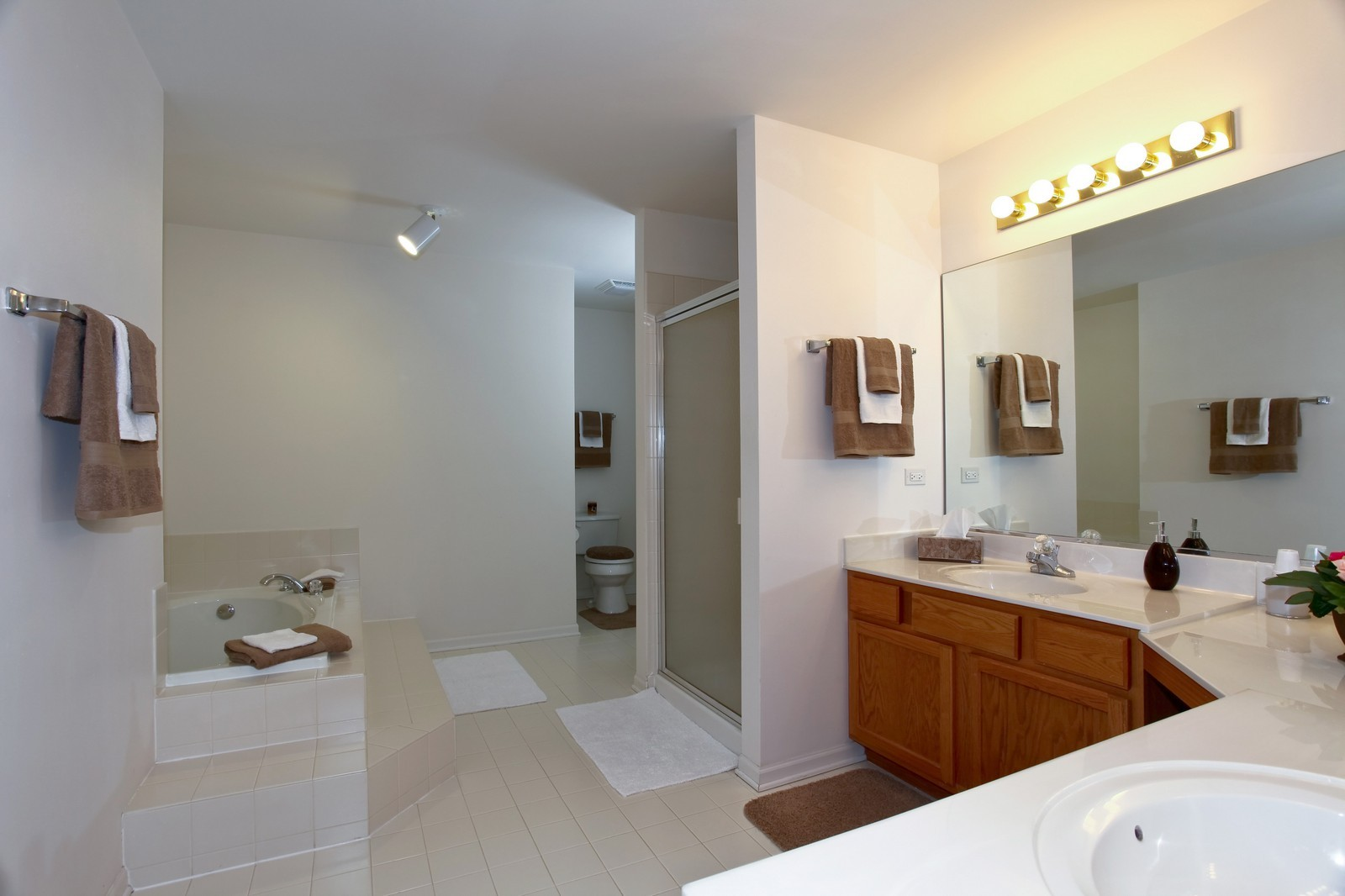 Real Estate Photography - 2025 Colonial Street, Aurora, IL, 60503 - Master Bathroom