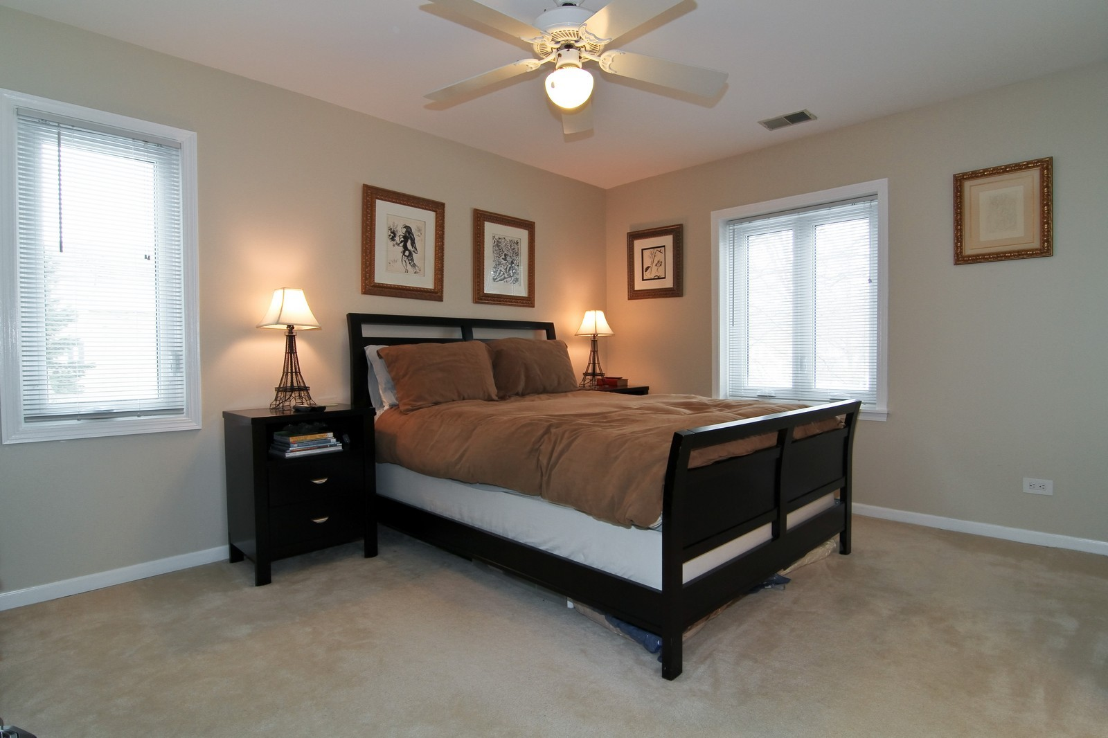 Real Estate Photography - 918 Rogers, 203, Downers Grove, IL, 60515 - Master Bedroom