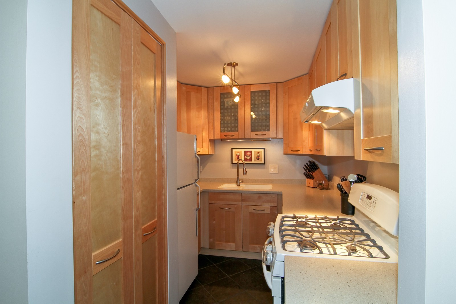 Real Estate Photography - 918 Rogers, 203, Downers Grove, IL, 60515 - Kitchen