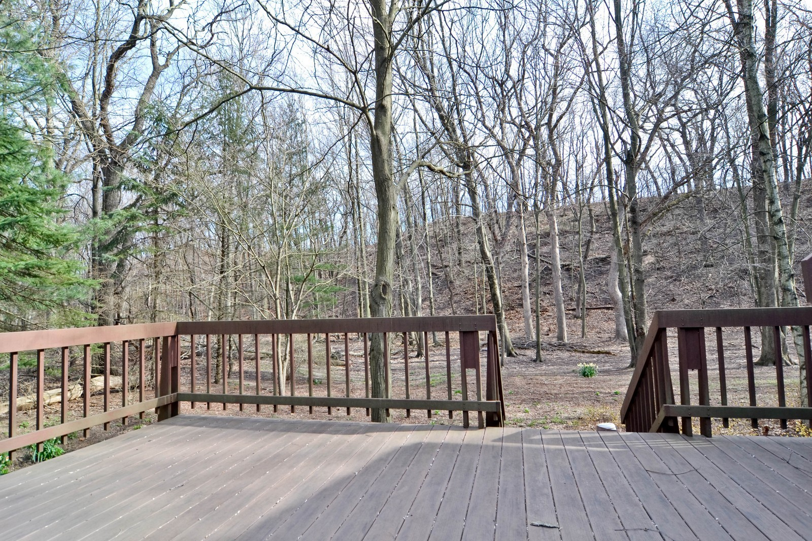 Real Estate Photography - 6 Pine Ln, Dune Acres, IN, 46304 - Backyard View From Deck