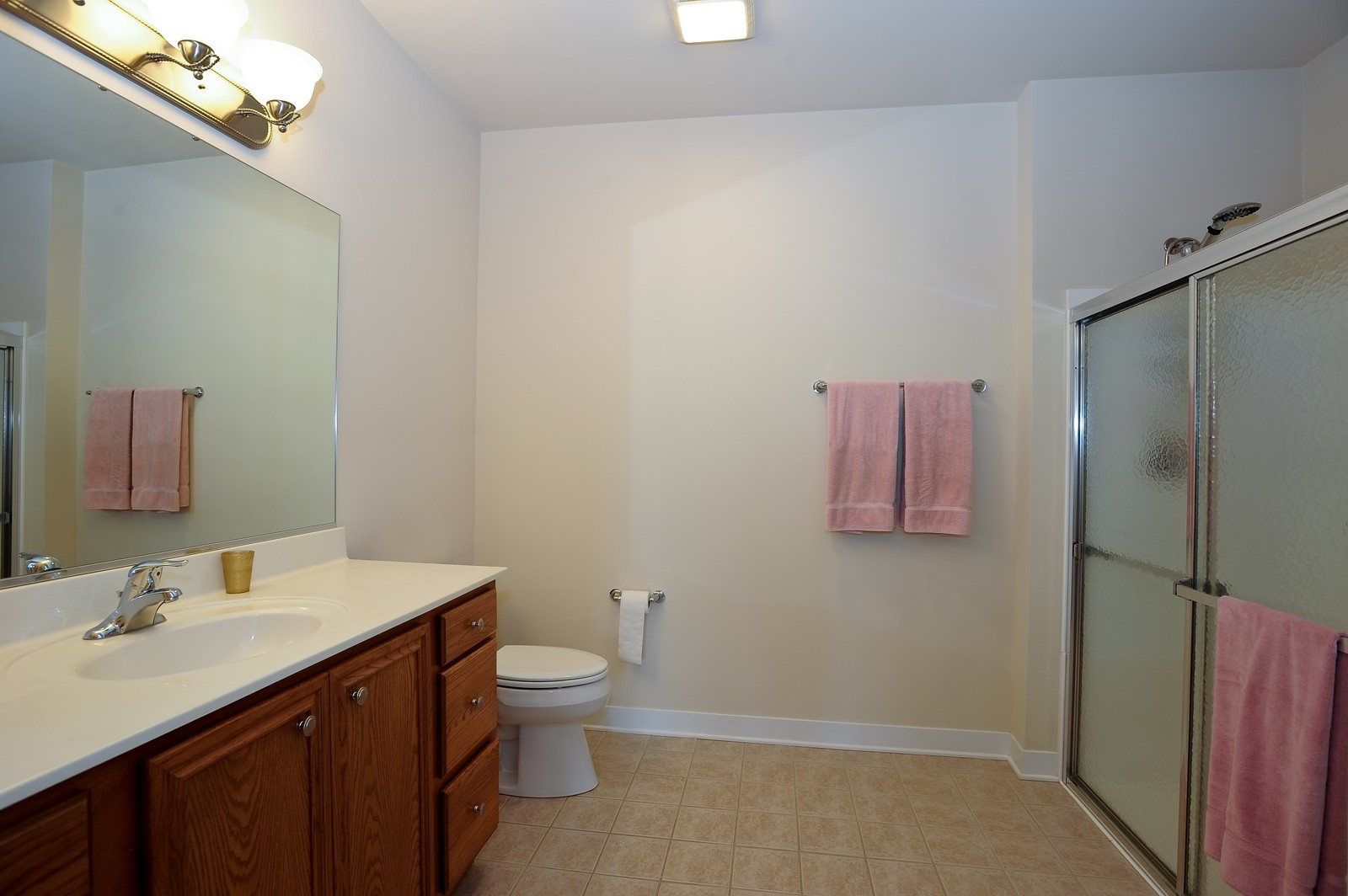 Real Estate Photography - 2692 Stone Circle, 209, Geneva, IL, 60134 - Master Bathroom