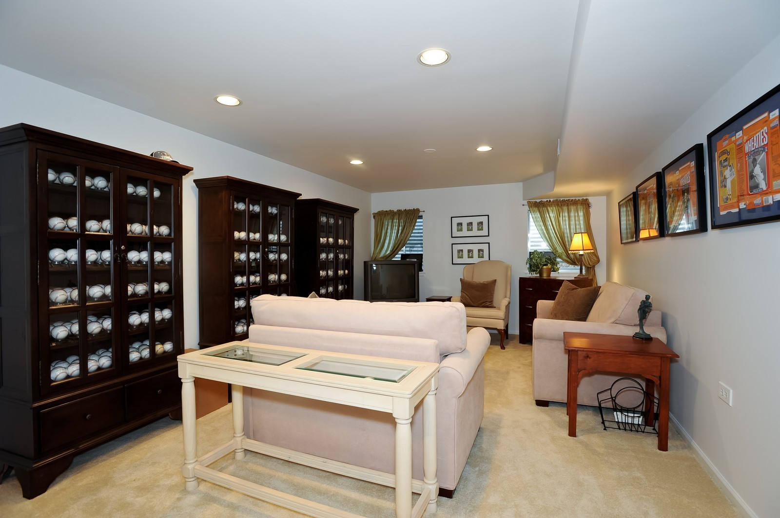 Real Estate Photography - 501 Citadel Circle, Westmont, IL, 60559 - Lower Level