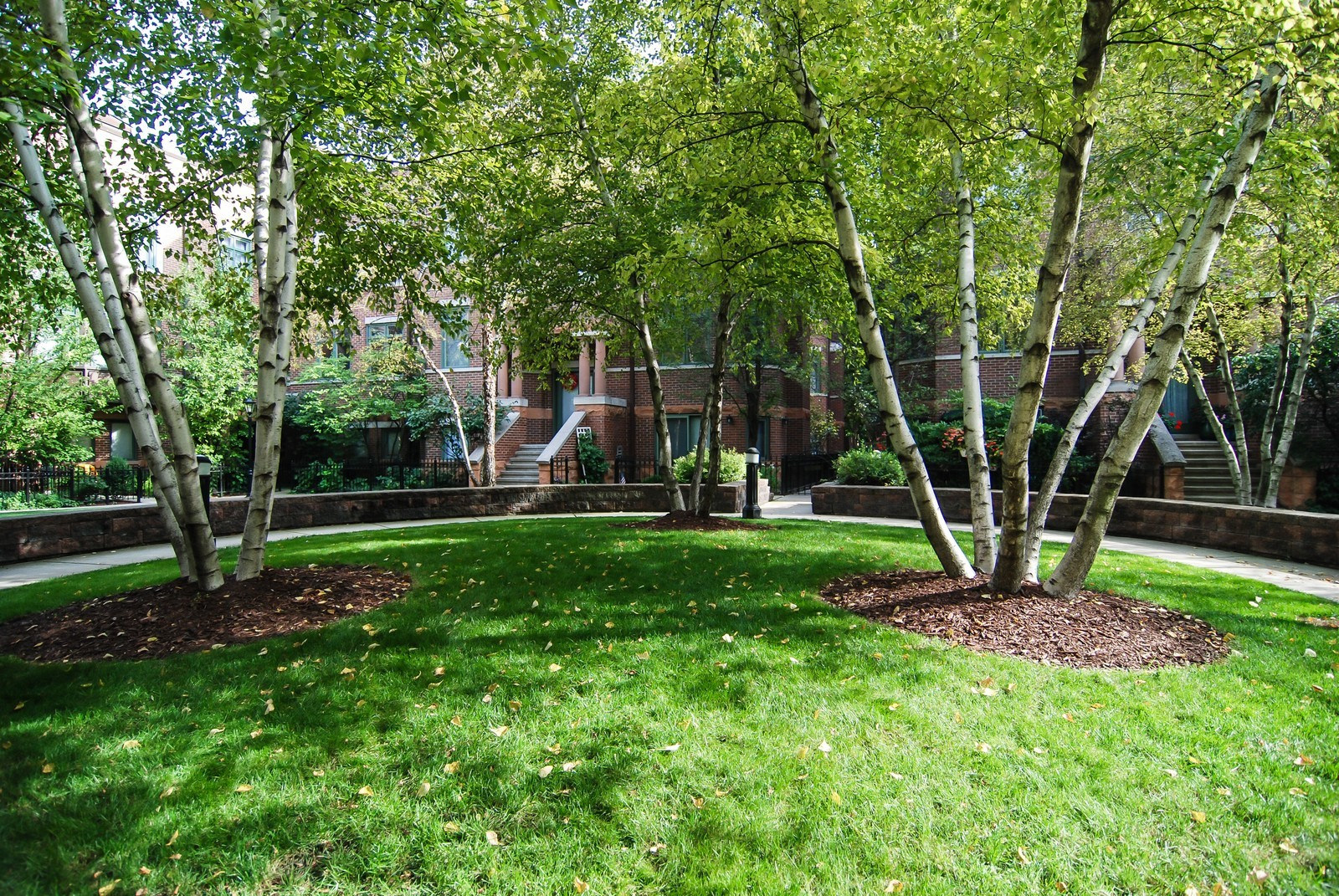 Real Estate Photography - 1351 W Altgeld, Unit 2K, Chicago, IL, 60614 - Courtyard