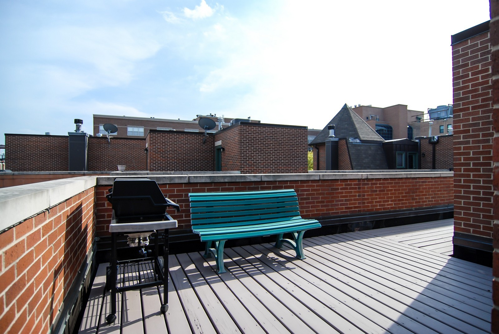 Real Estate Photography - 1351 W Altgeld, Unit 2K, Chicago, IL, 60614 - Roof Deck #2