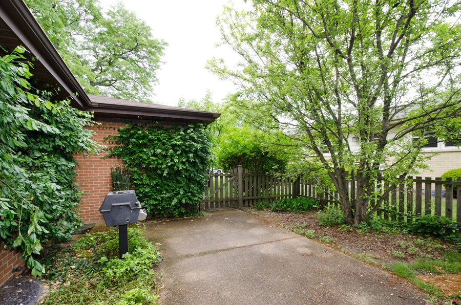 Real Estate Photography - 1509 Evergreen, Glenview, IL, 60025 - Back Yard