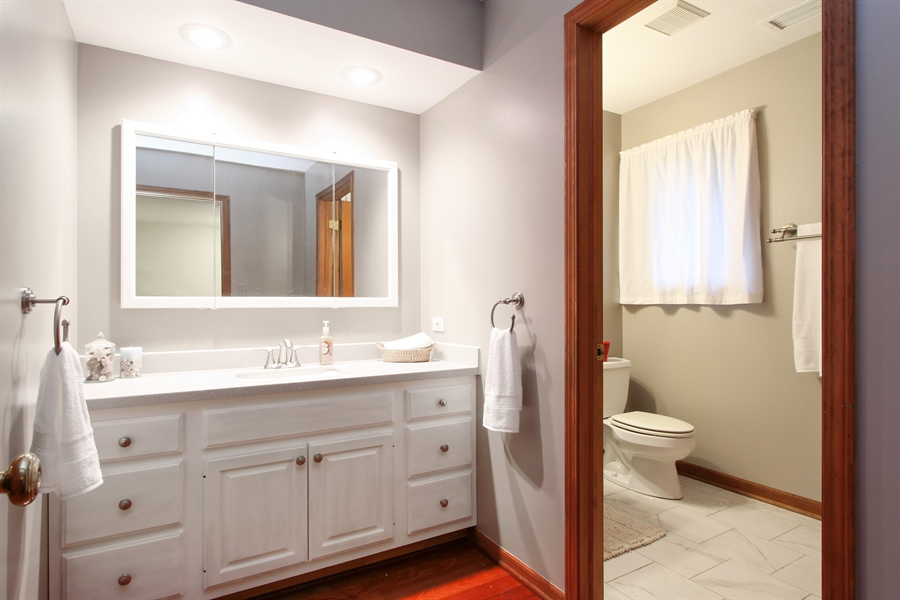 Real Estate Photography - 2 Conesus Ct, Hawthorn Woods, IL, 60047 - Master Bathroom