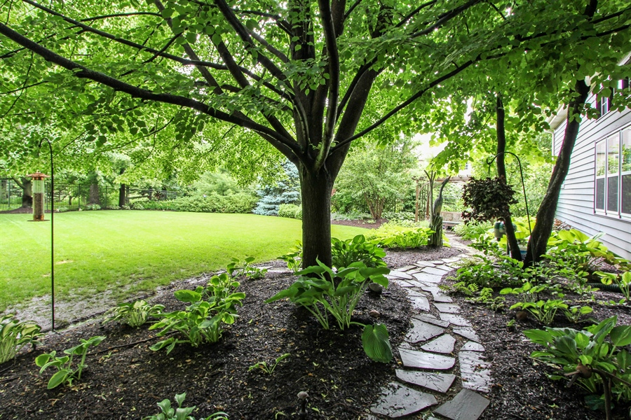 Real Estate Photography - 1191 Rodgers Lane, Lake Zurich, IL, 60047 - Back Yard