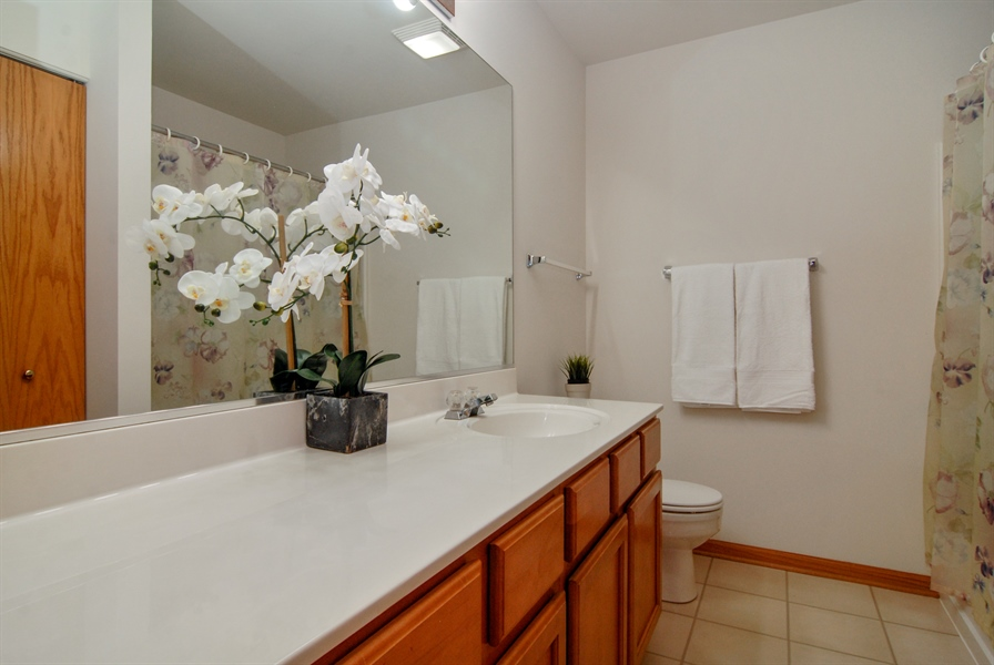 Real Estate Photography - 3240 Brownley, Aurora, IL, 60502 - Master Bathroom