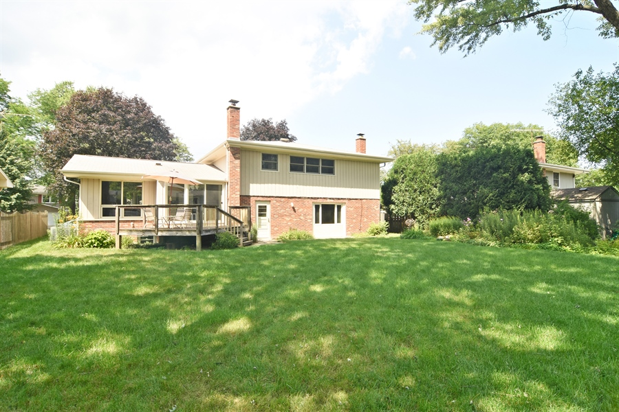 Real Estate Photography - 719 E Ivy Ln, Arlington Heights, IL, 60004 - Rear View