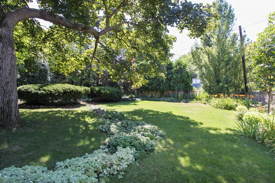 Real Estate Photography - 2306 Lincolnwood Dr, Evanston, IL, 60201 - Back Yard