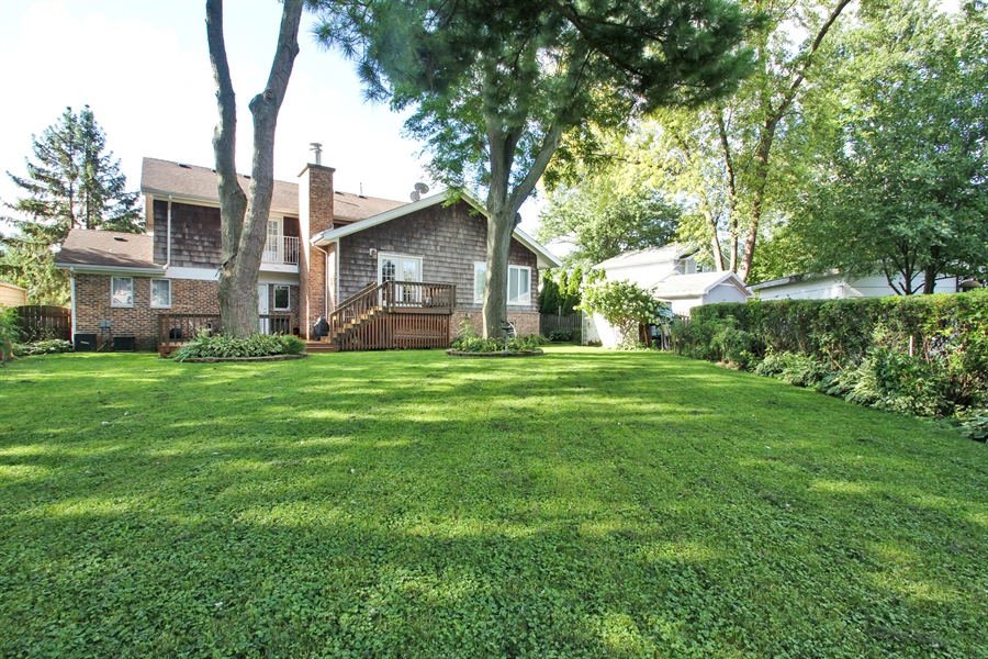 Real Estate Photography - 1710 W Oakton, Arlington Heights, IL, 60004 - Rear View