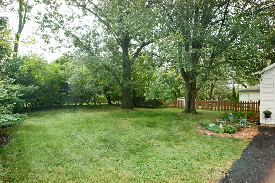 Real Estate Photography - 353 E Washington, Des plaines, IL, 60016 - Back Yard