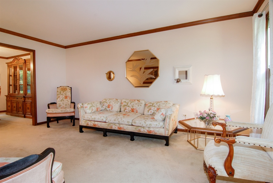 Real Estate Photography - 808 Biltmore Ct., Naperville, IL, 60563 - Living Room
