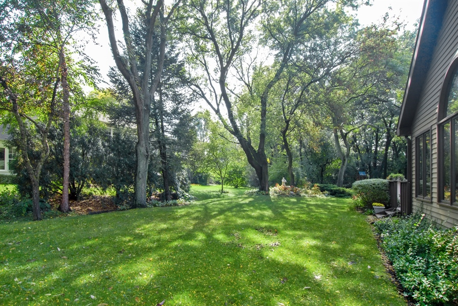 Real Estate Photography - 808 Biltmore Ct., Naperville, IL, 60563 - Back Yard