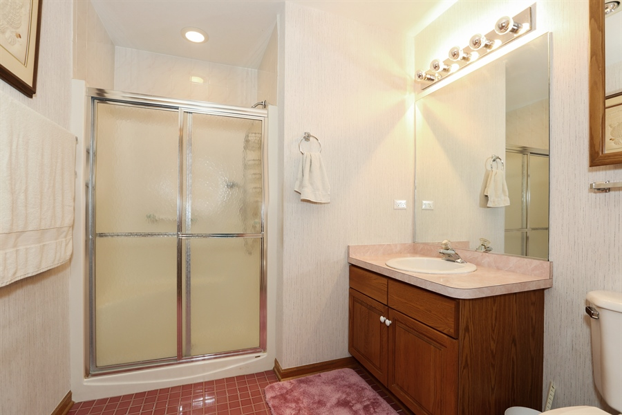 Real Estate Photography - 6742 Eagle Dr., Tinley Park, IL, 60477 - Lower Level Bathroom