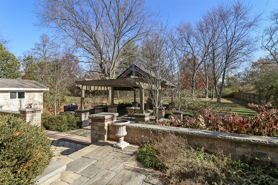 Real Estate Photography - 3777 Douglas Rd, Downers Grove, IL, 60515 - Back Yard