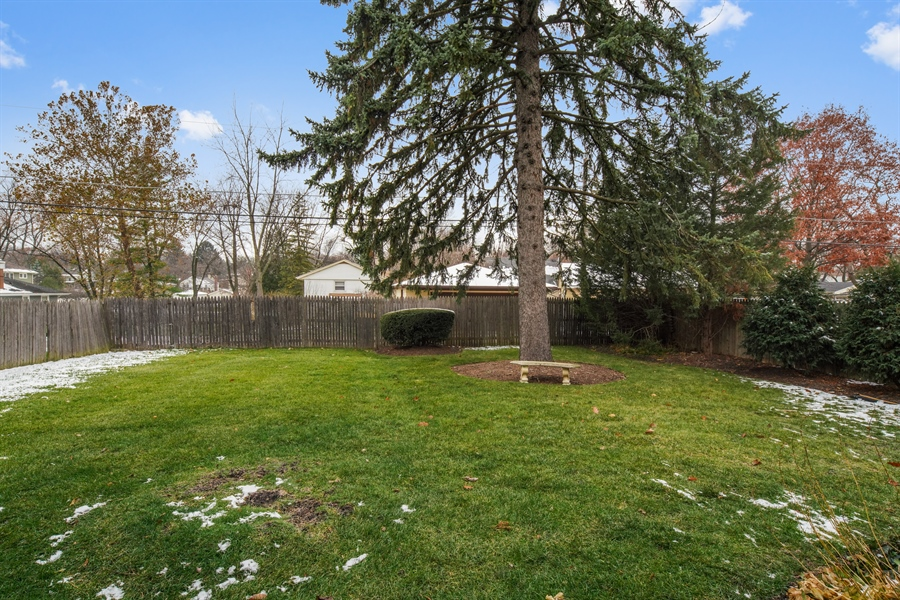 Real Estate Photography - 106 S. Lincoln St, Westmont, IL, 60559 - Back Yard