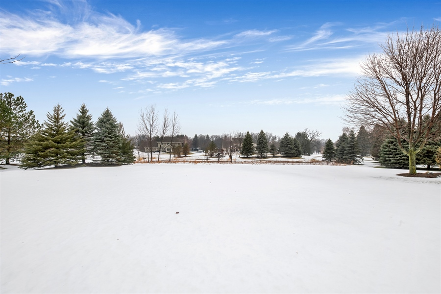 Real Estate Photography - 8044 W Poplar Drive, mequon, WI, 53097 - Back Yard