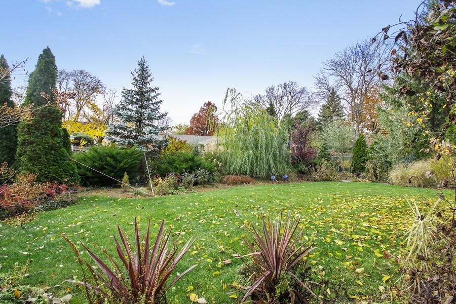 Real Estate Photography - 5316 Howard Ave, Western Springs, IL, 60558 - Back Yard