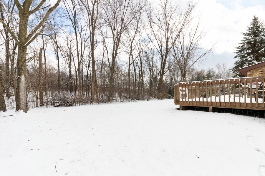 Real Estate Photography - 14855 Westwood Drive, Orland Park, IL, 60462 - Back Yard