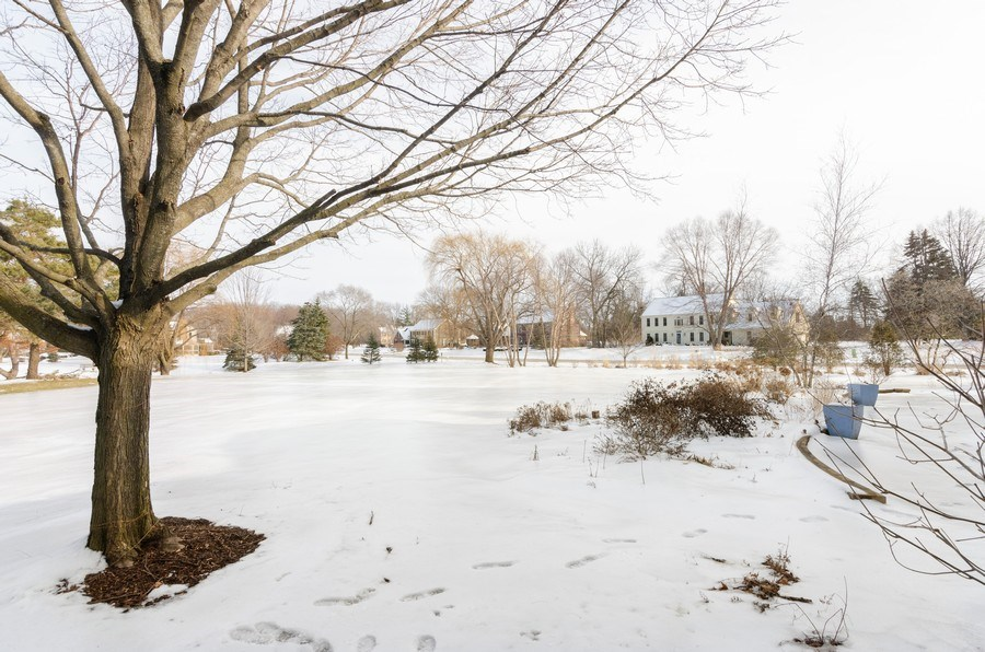 Real Estate Photography - 20587 Swansway, Deer Park, IL, 60010 - Back Yard