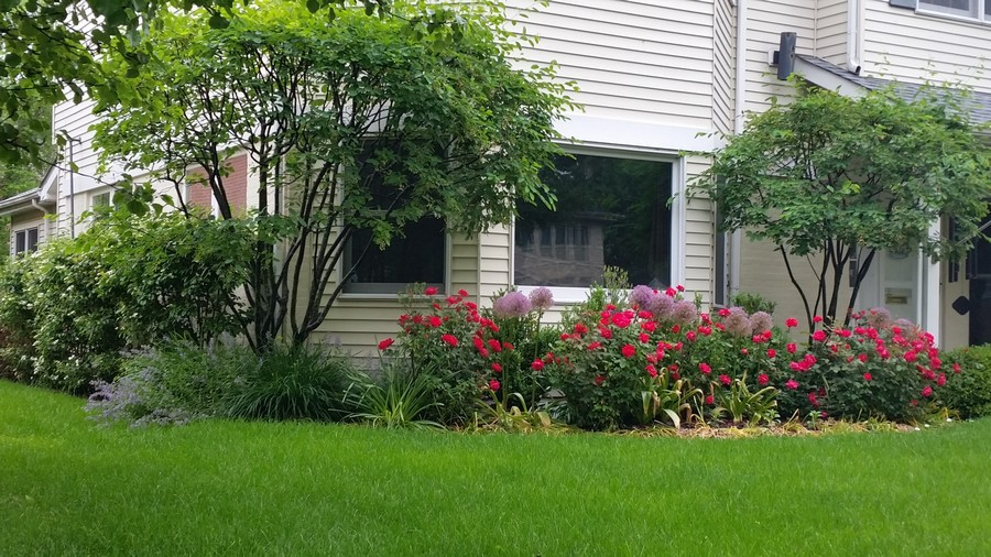 Real Estate Photography - 2542 Illinois Road, Northbrook, IL, 60062 - Landscaping