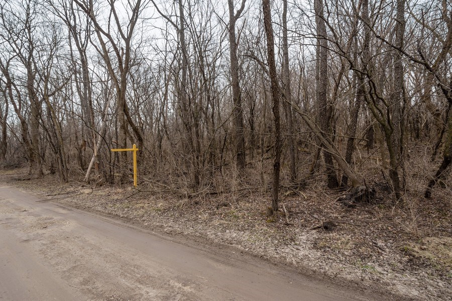 Real Estate Photography - Lot 16 Manito Trail, Algonquin, IL, 60102 - Location 12